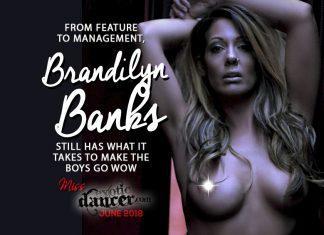 Brandilyn Banks The Pub