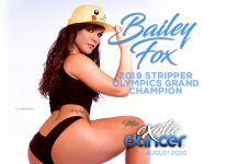 Bailey Fox